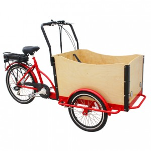 electric comfortable Cargo bike