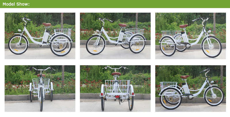 three wheel bike with basket  Frame :steel 45、Aluminum Wheel Size: 24   Speed:7 Speeds  brake/front、rear:Disc brake(yinglong brand)