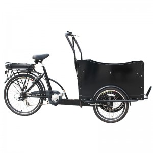 ice cream cargo bike