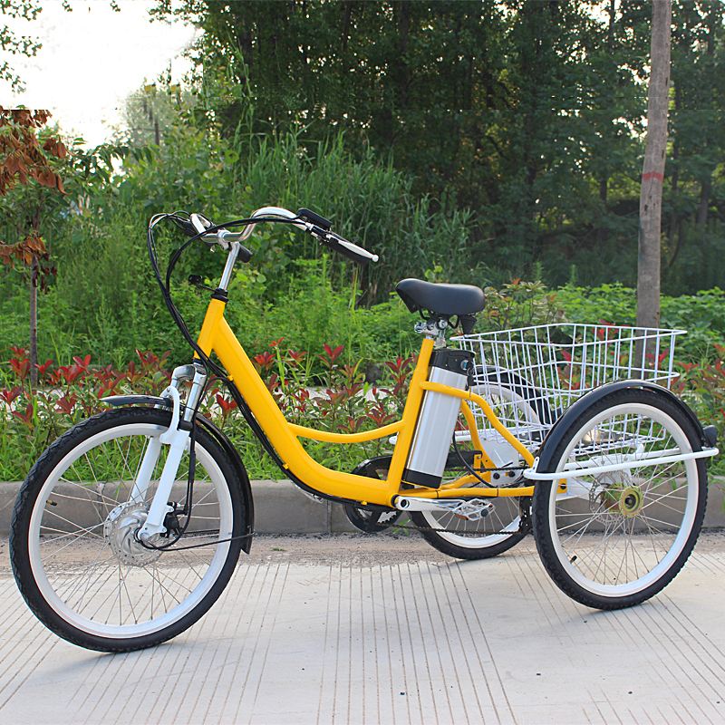 Family Adult Tricycle Jxcycle