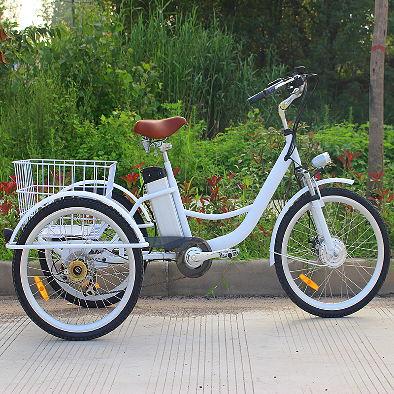 Bike With Three Wheels And Basket Jxcycle
